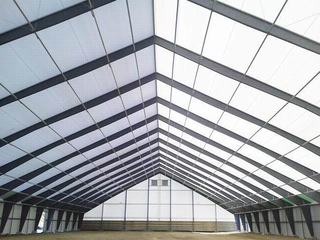 Estruc logist sac estructuras met licas para hangares - Tipos de estructura metalica ...